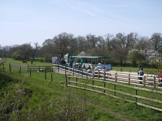 Willows Farm