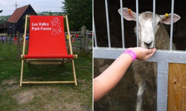 Lee-Valley-Farm