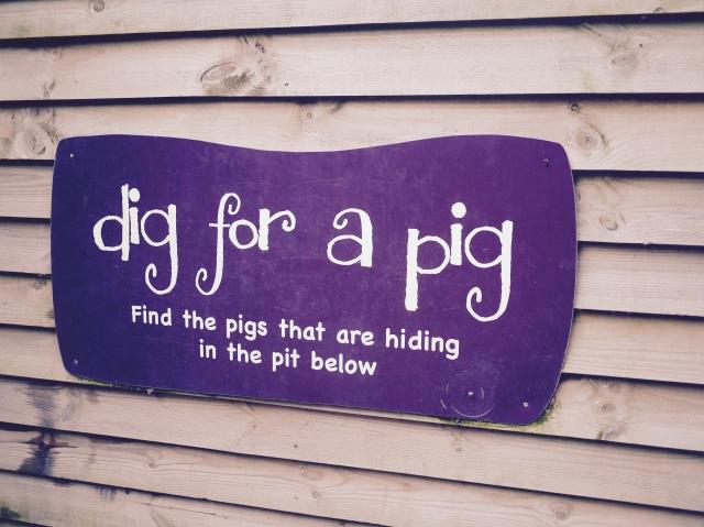 the pigs edgefield norfolk